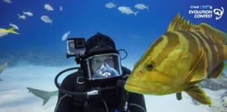 PADI, GoPro Announce Winners of Evolution Video Contest