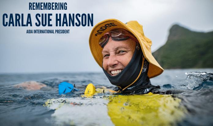 Remembering Carla Sue Hanson - AIDA President