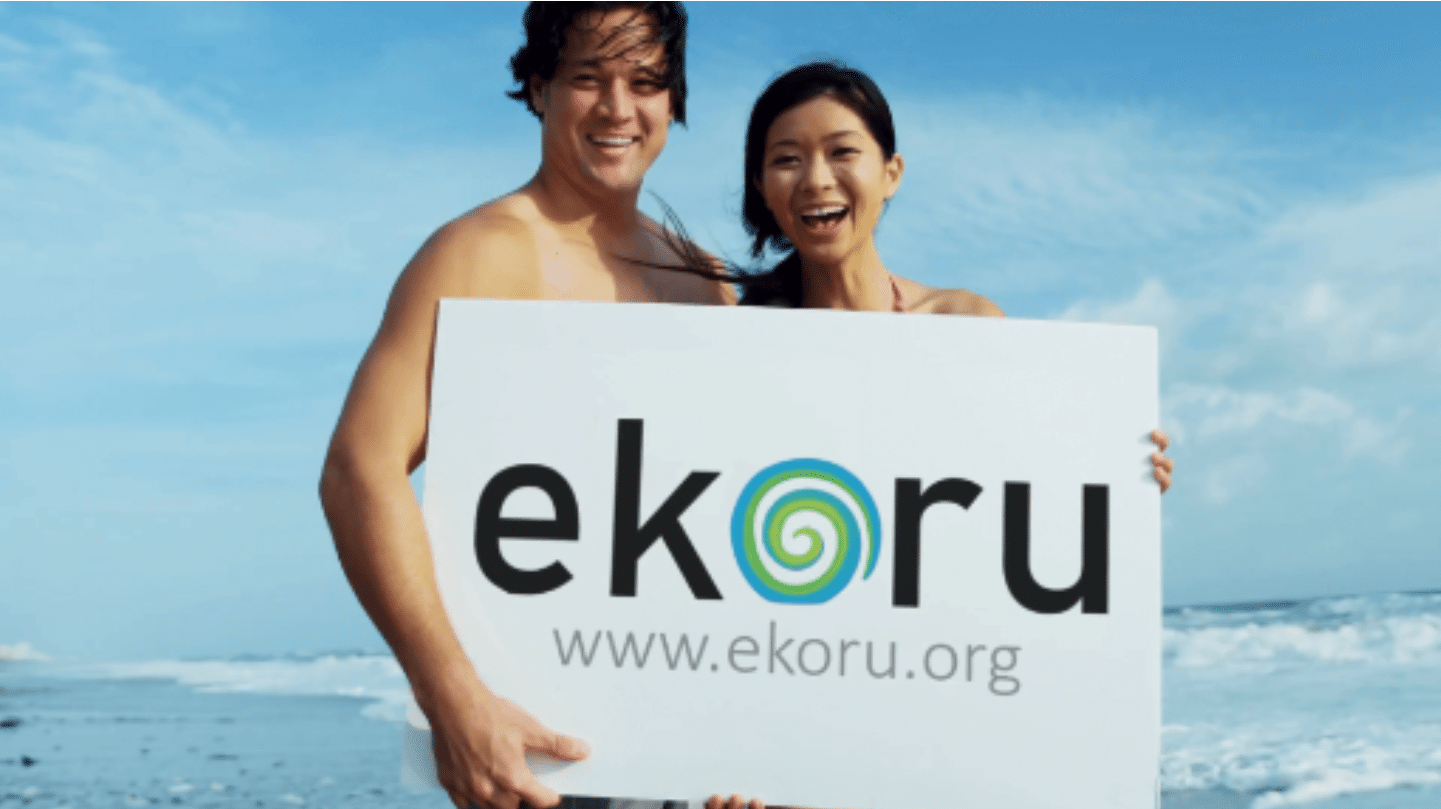 EKORU enviromental search engine