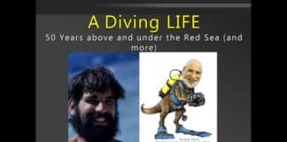 Check Out Howard Rosenstein's 'A Diving Life' Red Sea Presentation