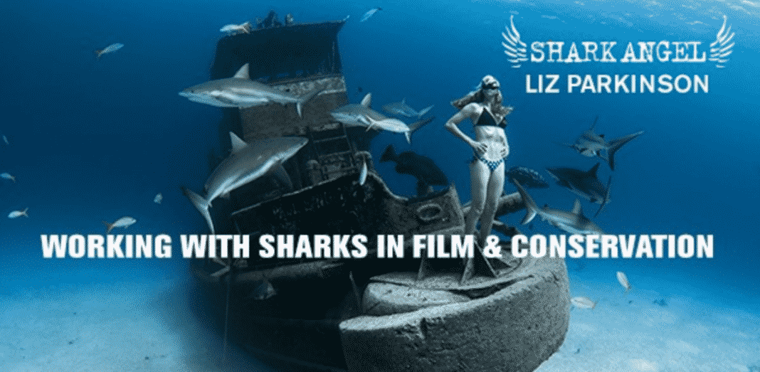 Shark Angels Earth Day 2020 webinar with stuntwoman Liz Parkinson (Image credit: Lia Barrett)