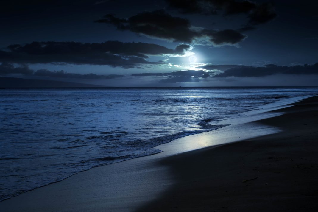 Quiet Moonlit Beach in Maui Hawaii