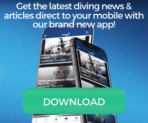 Daily Diving Content - Direct To Your Mobile Device