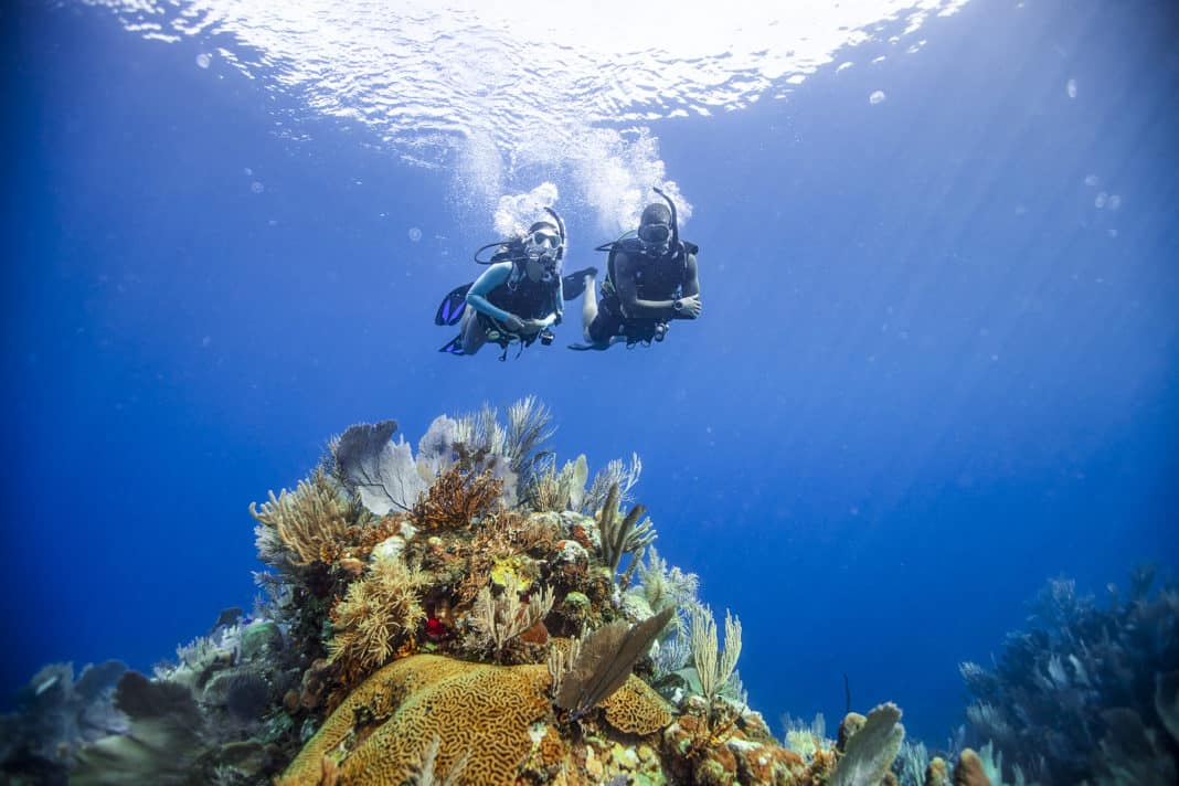 PADI Calls On Divers To Save The Ocean from Home On Earth Day
