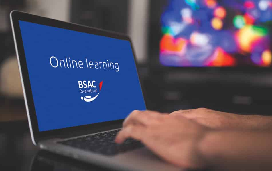 BSAC Online Learning