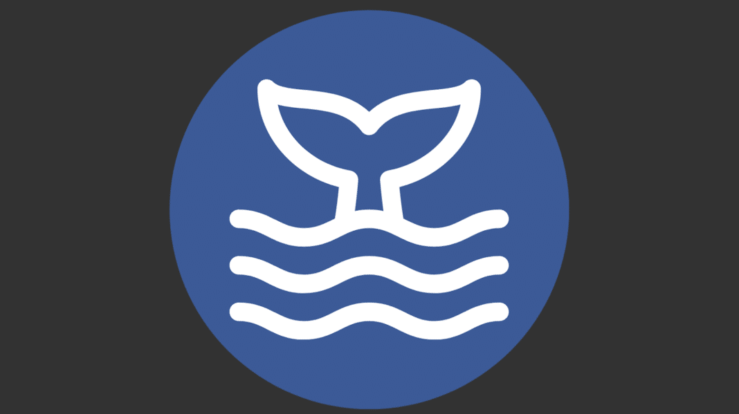 MFDI Big Logo