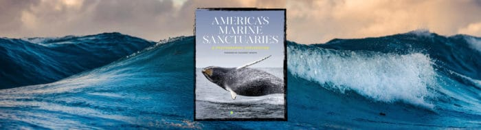 American Seas: Exploring the National Marine Sanctuaries: A Photographic Exploration