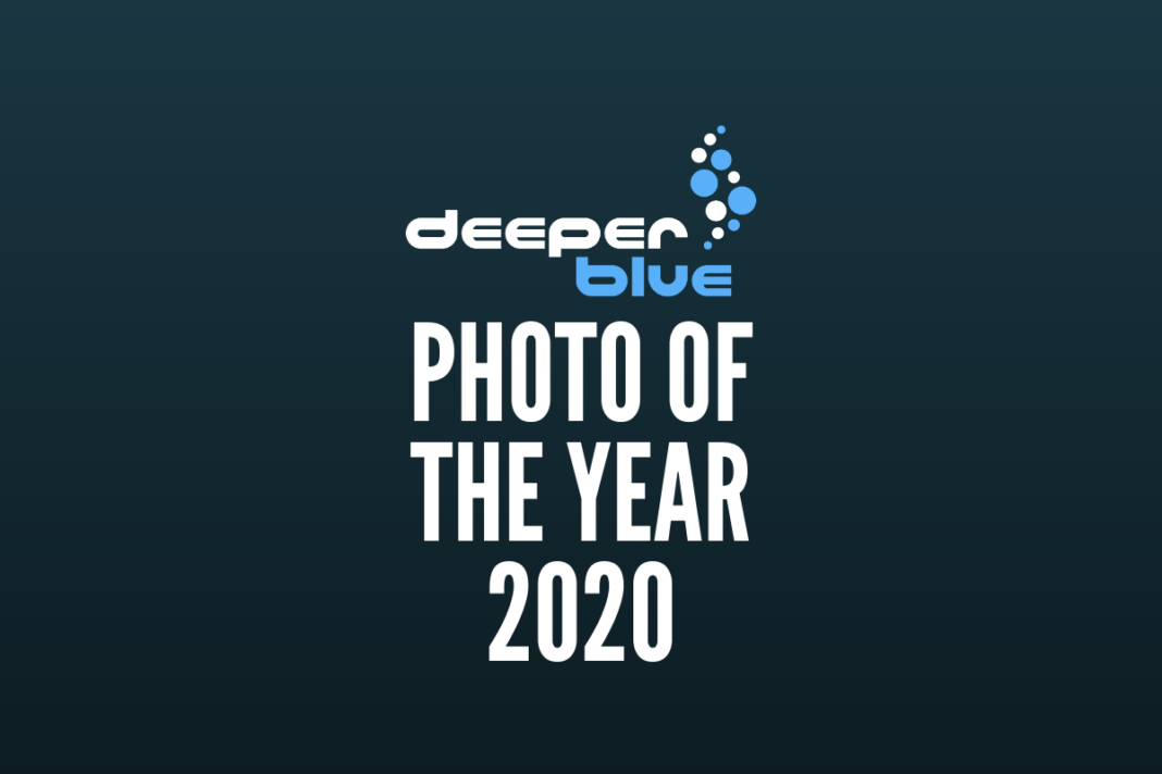 DeeperBlue.com - Photo Of The Year 2020