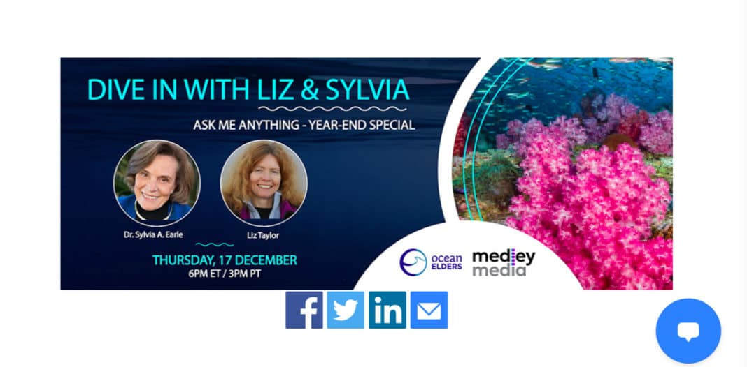Dive In With Liz and Sylvia