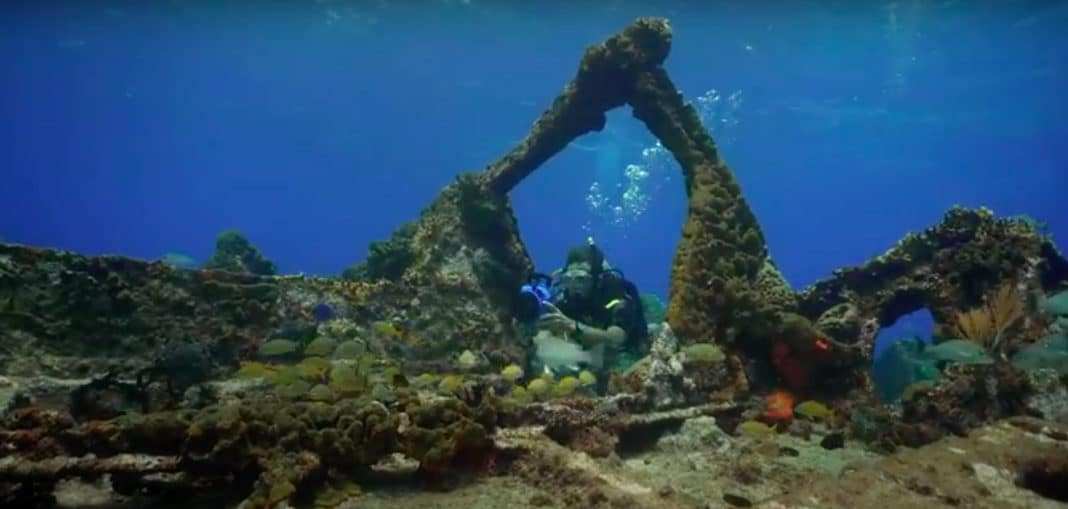 PADI Offering 'Book With Confidence' Dive Travel Deals