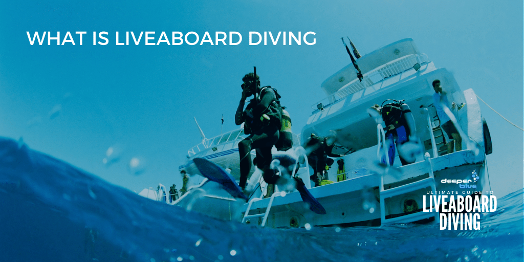 What Is Liveaboard Diving?
