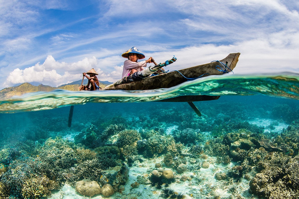 The Ocean Life and Livelihoods Winner Renee Capozzola