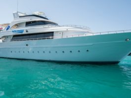 Blue O Two Announces Red Sea Liveaboard Competition
