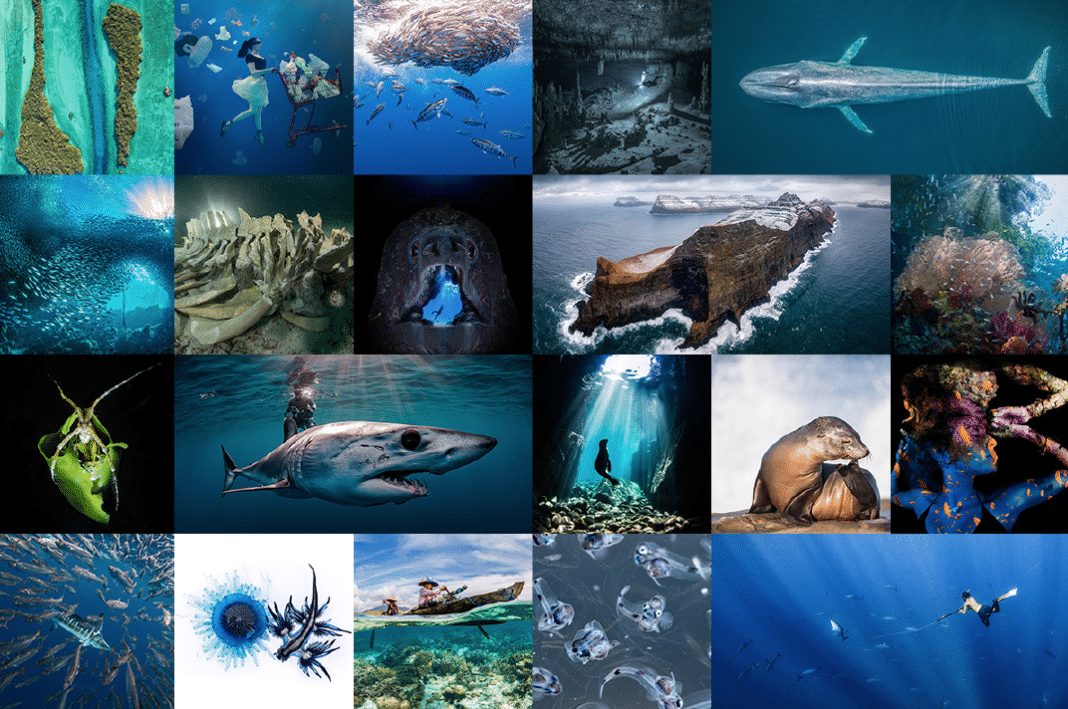 U.N. World Oceans Day Photo Competition Winners Announced 2