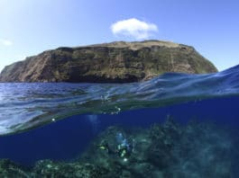 Azores Hope Spot (Image credit-Mission Blue)