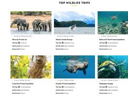 NatGeo Wildlife Expeditions (Image credit-NationalGeographic.com)