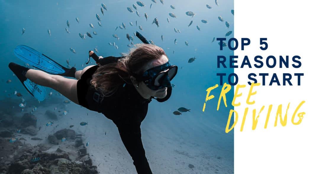 Top 5 Reasons to Start Freediving - Huish Outdoors