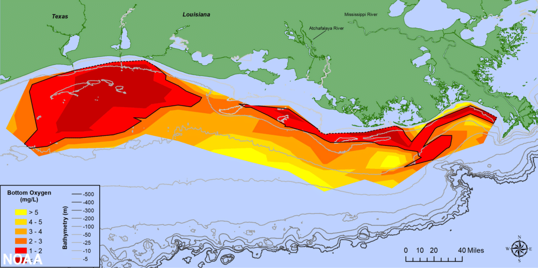 Map of measured Gulf hypoxia zone, July 25-31, 2021-LUMCON-NOAA